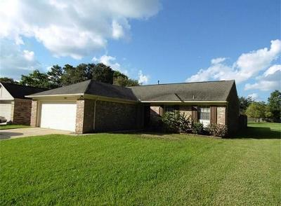 Sugar Land Single Family Home For Sale: 3931 Windmill Street