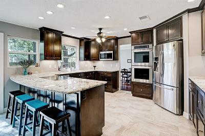 Single Family Home For Sale: 1206 Longledge Drive