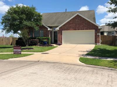 Southern Trails Single Family Home For Sale: 3323 Bright Landing Lane