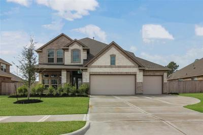 Tomball Single Family Home For Sale: 12707 Sherborne Castle