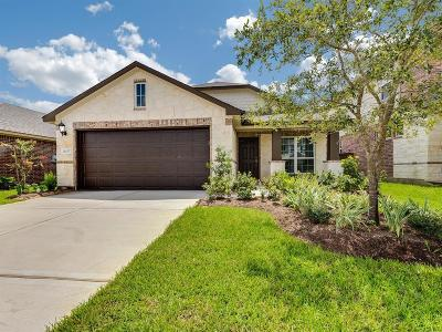 Katy Single Family Home For Sale: 24207 Asher Hollow Lane