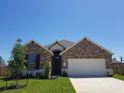 Conroe Single Family Home For Sale: 14228 Irvine Ranch