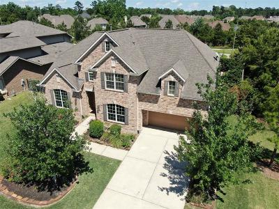 The Woodlands Single Family Home For Sale: 11 E Hullwood Circle