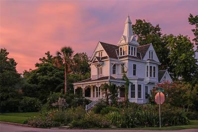 Houston Single Family Home For Sale: 1802 Harvard Street