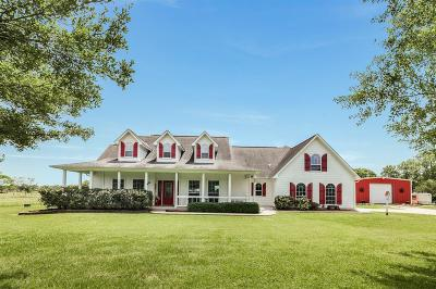 Alvin Single Family Home For Sale: 2735 County Road 155