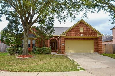 Sugar Land Single Family Home For Sale: 4119 Henley Court