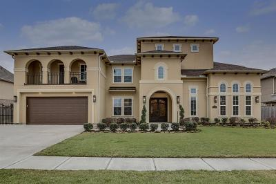 Friendswood Single Family Home For Sale: 1807 Sterling Creek Drive