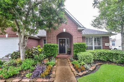 Sugar Land Single Family Home For Sale: 1419 Cross Valley Drive