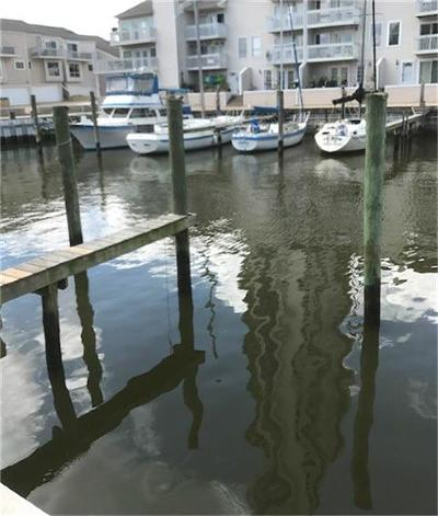 Seabrook Residential Lots & Land For Sale: 11 Marina Berth