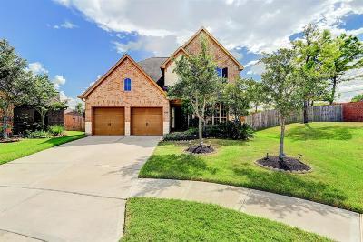 Pearland Single Family Home For Sale: 2427 Lost Bridge Lane