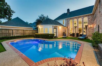 Houston Single Family Home For Sale: 503 Fairport Lane