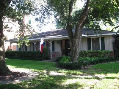 Bellaire Single Family Home For Sale: 4714 Holly Street