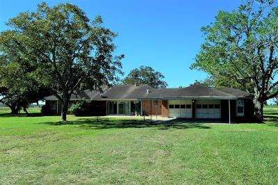 Fort Bend County Farm & Ranch For Sale: 9237 Grunwald Road