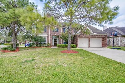 Shadow Creek Ranch Single Family Home For Sale: 11313 Silver Bay Court