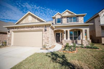 Spring Single Family Home For Sale: 4669 Autumn Morning Drive