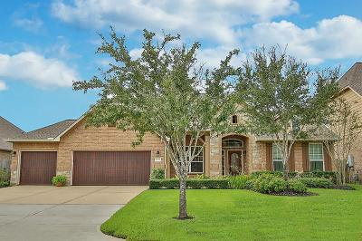 Tomball Single Family Home For Sale: 12419 Muller Sky Court