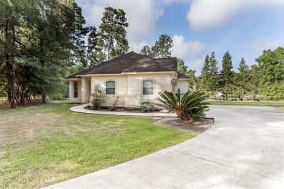 Magnolia Single Family Home For Sale: 803 Mackintosh Drive