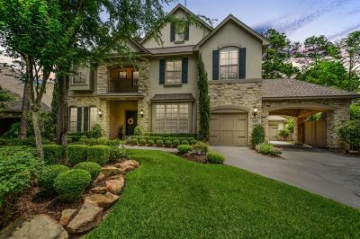 The Woodlands Single Family Home For Sale: 22 Mirror Ridge Drive