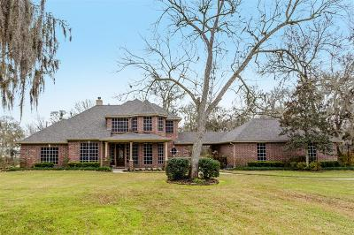 Fort Bend County Single Family Home For Sale: 7327 Rustling Oaks Drive