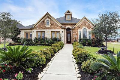 Rosenberg Single Family Home For Sale: 8802 Snyder Farm Lane
