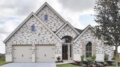 Manvel Single Family Home For Sale: 2730 Newport Lake Boulevard