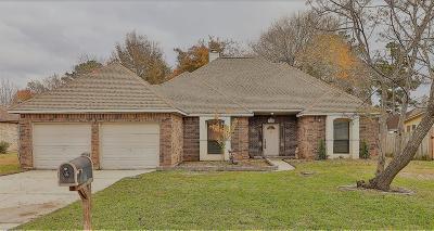 Willis Single Family Home For Sale: 12340 W Taurus Drive