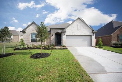 Rosenberg Single Family Home For Sale: 7519 Dry Stone Lane