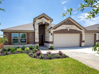 Texas City Single Family Home For Sale: 12509 Grand Haven Drive