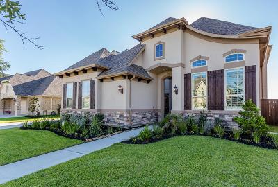Manvel Single Family Home For Sale: 4414 Red Eagle Pass Lane