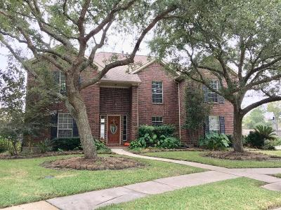 Friendswood Single Family Home For Sale: 704 Tropicana Court