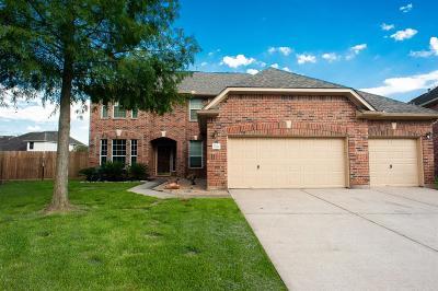 Houston Single Family Home For Sale: 9514 Stone Terrace Court