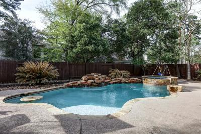 Conroe Single Family Home For Sale: 63 N Rambling Ridge Place