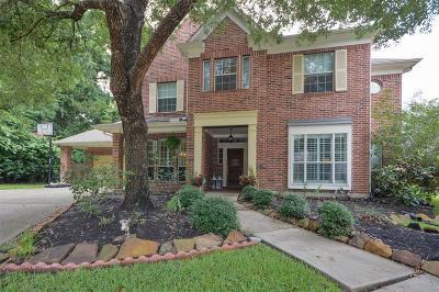 Houston Single Family Home For Sale: 3422 Big Hickory Drive