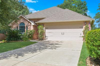 Willis Single Family Home For Sale: 10451 Parkside Drive