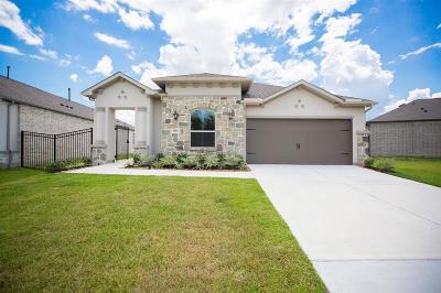 Porter Single Family Home For Sale: 5118 Andorra Bend Lane
