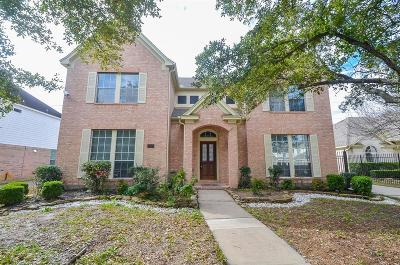 Houston Single Family Home For Sale: 3210 Shadowwalk Drive