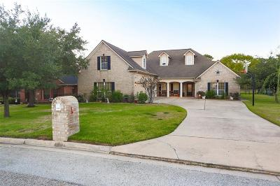 Willis Single Family Home For Sale: 12652 Lake Vista Dr Drive