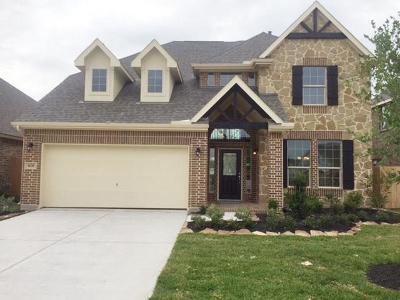 League City Single Family Home For Sale: 1635 Canchola Lane