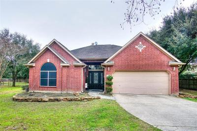Tomball Single Family Home For Sale: 26006 La Fouche Drive