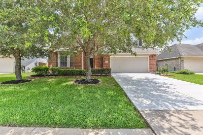 Pearland Single Family Home For Sale: 12003 Forest Sage Lane