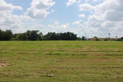 Columbus Residential Lots & Land For Sale: 207 McCormick