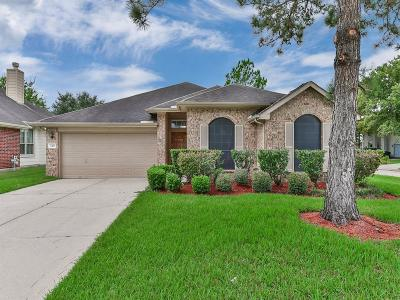 Sugar Land Single Family Home For Sale: 3419 Foursome Lane