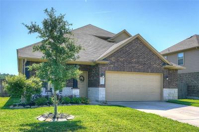 Single Family Home For Sale: 18722 Deer Trace Drive