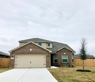 Texas City Single Family Home For Sale: 2318 Oyster Bay Avenue