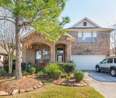 League City Single Family Home For Sale: 2751 Villa Bella Court