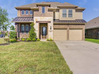 League City Single Family Home For Sale: 1618 Palo Duro Canyon Drive