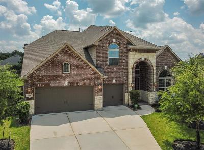 Porter Single Family Home For Sale: 24510 Highbridge Forest Lane