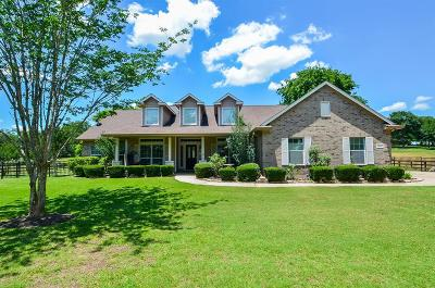 Sealy Single Family Home For Sale: 315 River Ridge Road