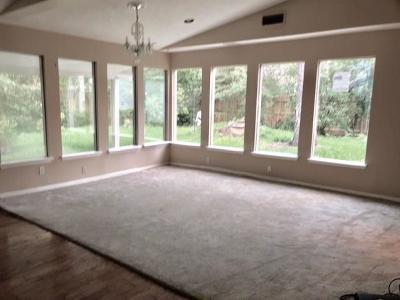 Houston Single Family Home For Sale: 10619 Meadow Lake Lane