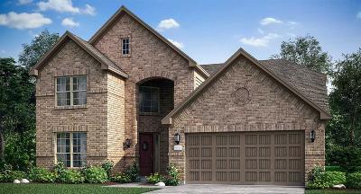 Rosharon Single Family Home For Sale: 4915 Birchwood Bluff Lane